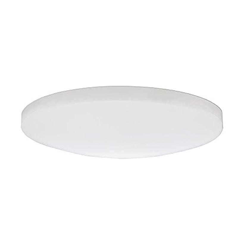 管理しますホーンわなLithonia Lighting DSATL16 M4 Replacement Glass Diffuser, 16', White [並行輸入品]
