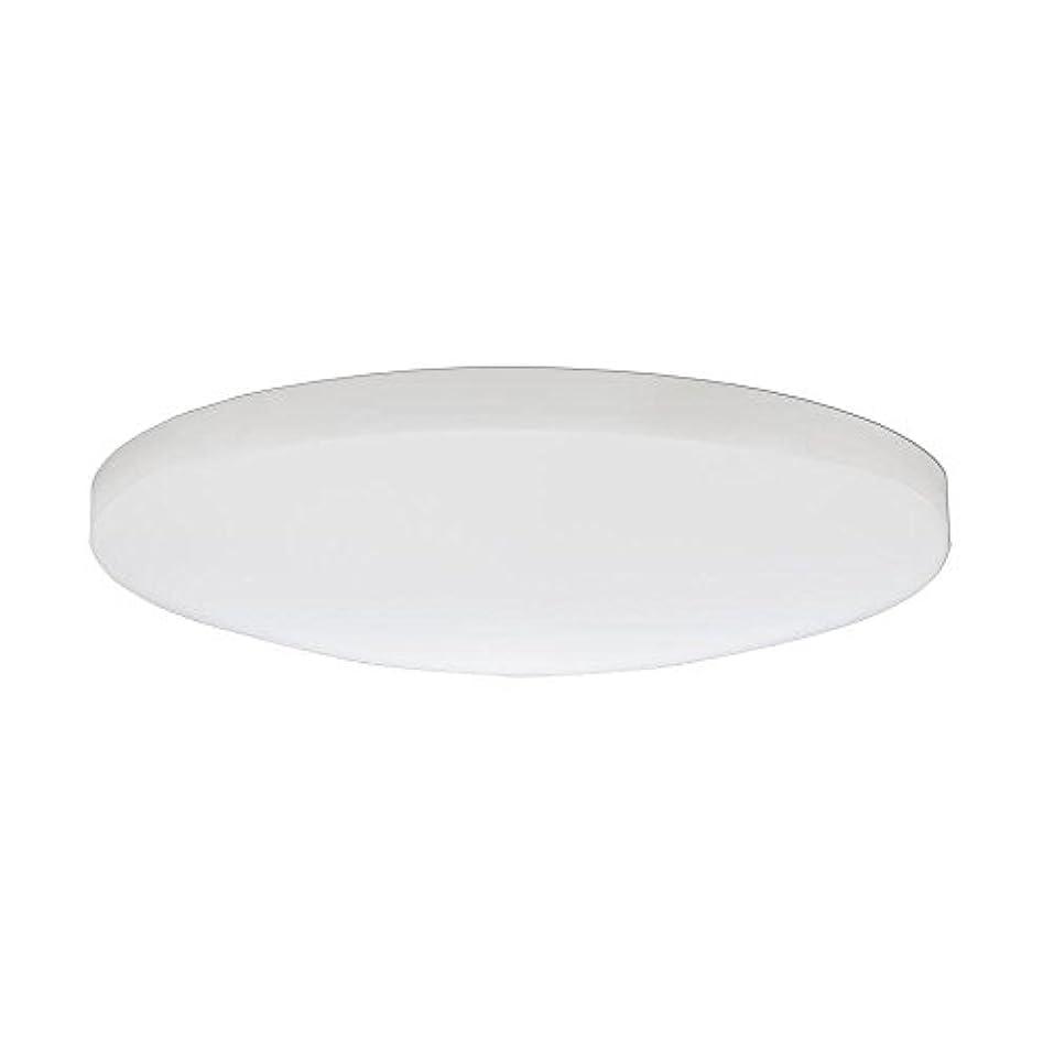 ボルト殉教者名誉Lithonia Lighting DSATL16 M4 Replacement Glass Diffuser, 16', White [並行輸入品]