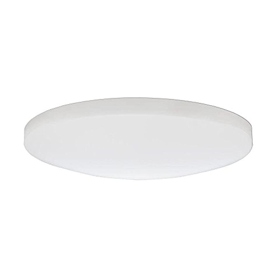 タンク抗生物質世紀Lithonia Lighting DSATL16 M4 Replacement Glass Diffuser, 16', White [並行輸入品]