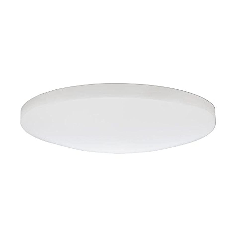 時刻表値測定Lithonia Lighting DSATL16 M4 Replacement Glass Diffuser, 16', White [並行輸入品]