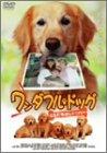 ワンダフル・ドッグ-ともだちはレトリバー- [DVD]