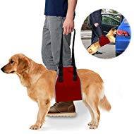 Roadwi犬リフトサポート&リハビリテーションハーネスオックスフォードとナイロンパッドと反射ステッチ、理想的な支援のスリング犬リカバリ、推奨(M : 25–55ポンド、L : 55–77lbs) 犬 M レッド