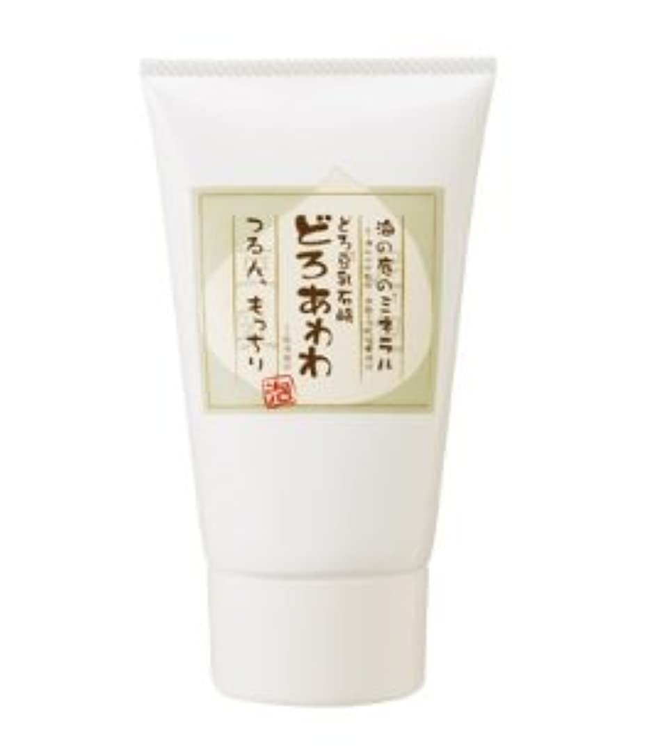 どれでも実質的に準備するどろ豆乳石鹸 どろあわわ あわわ洗顔 110g (チューブタイプ) 2個セット