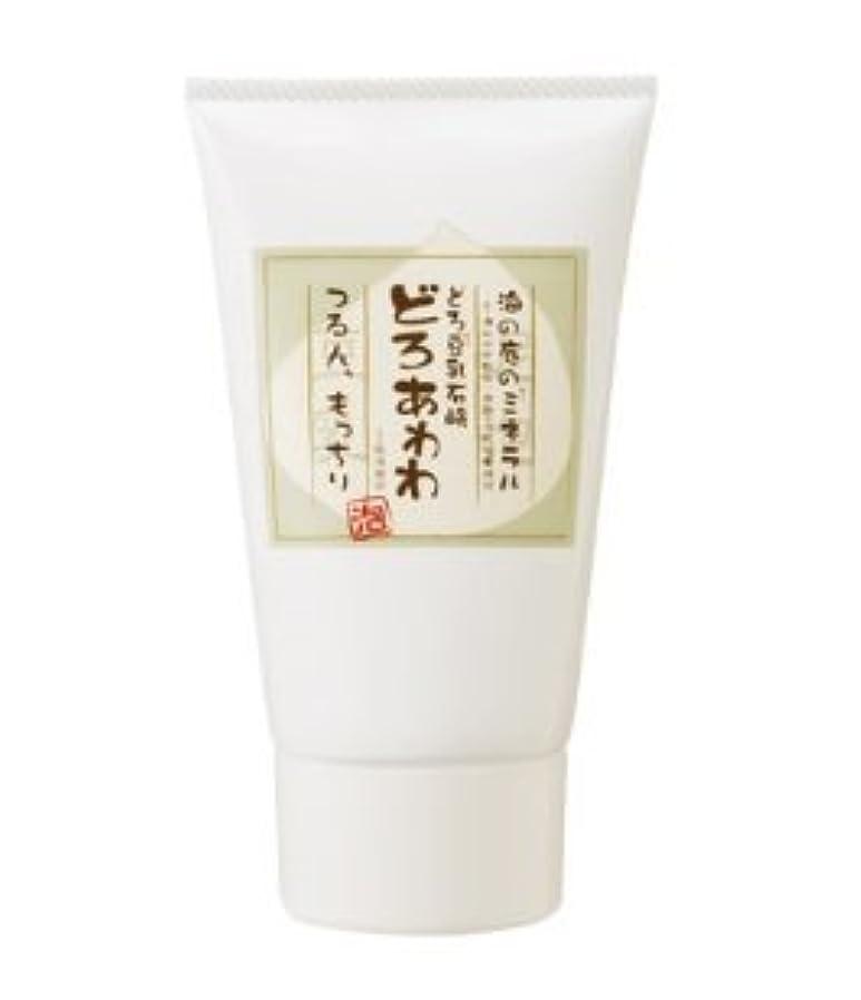 銛アルミニウム瞑想的どろ豆乳石鹸 どろあわわ あわわ洗顔 110g (チューブタイプ) 2個セット