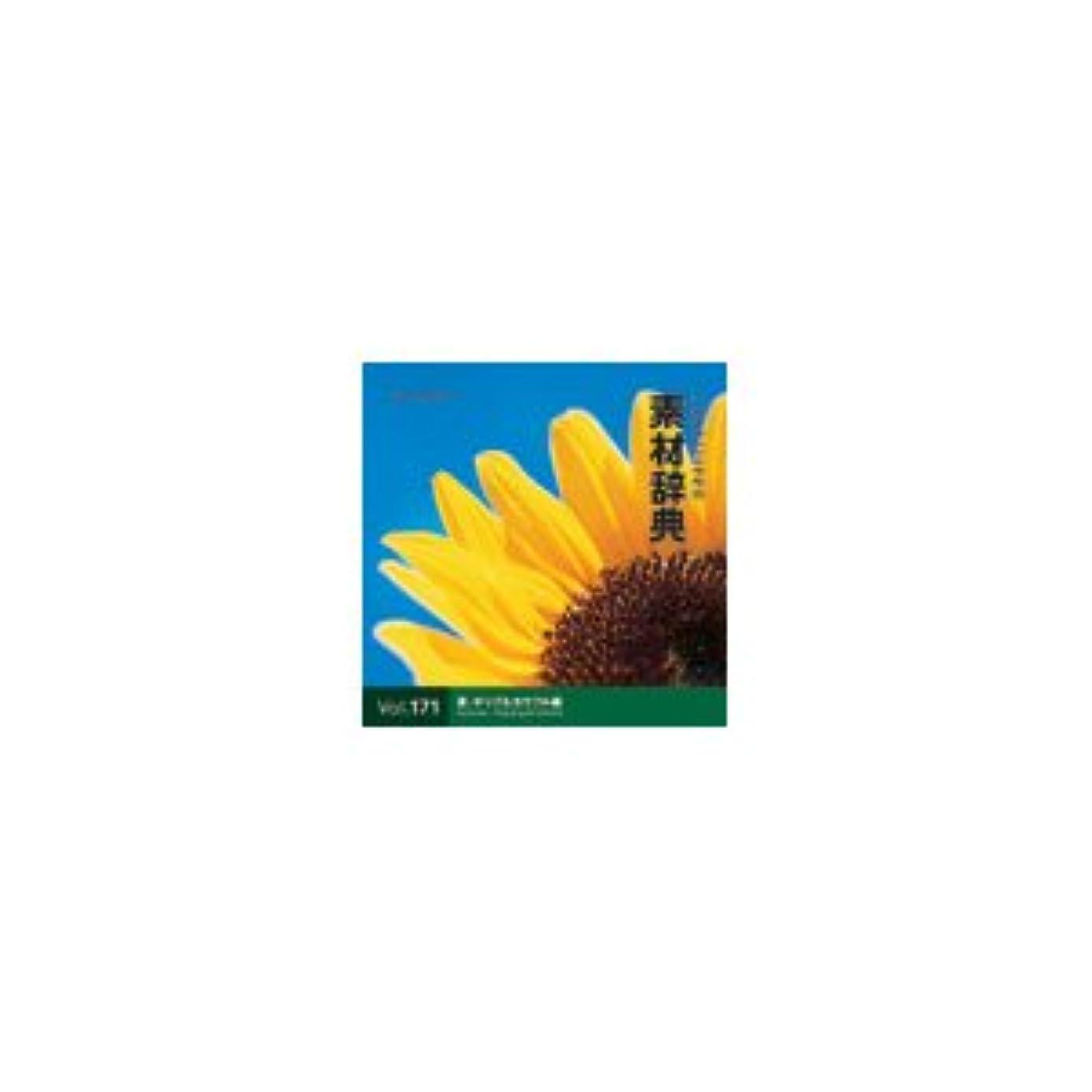 吹雪仕様ミスペンド写真素材 素材辞典Vol.171 夏-ポップ&カラフル編