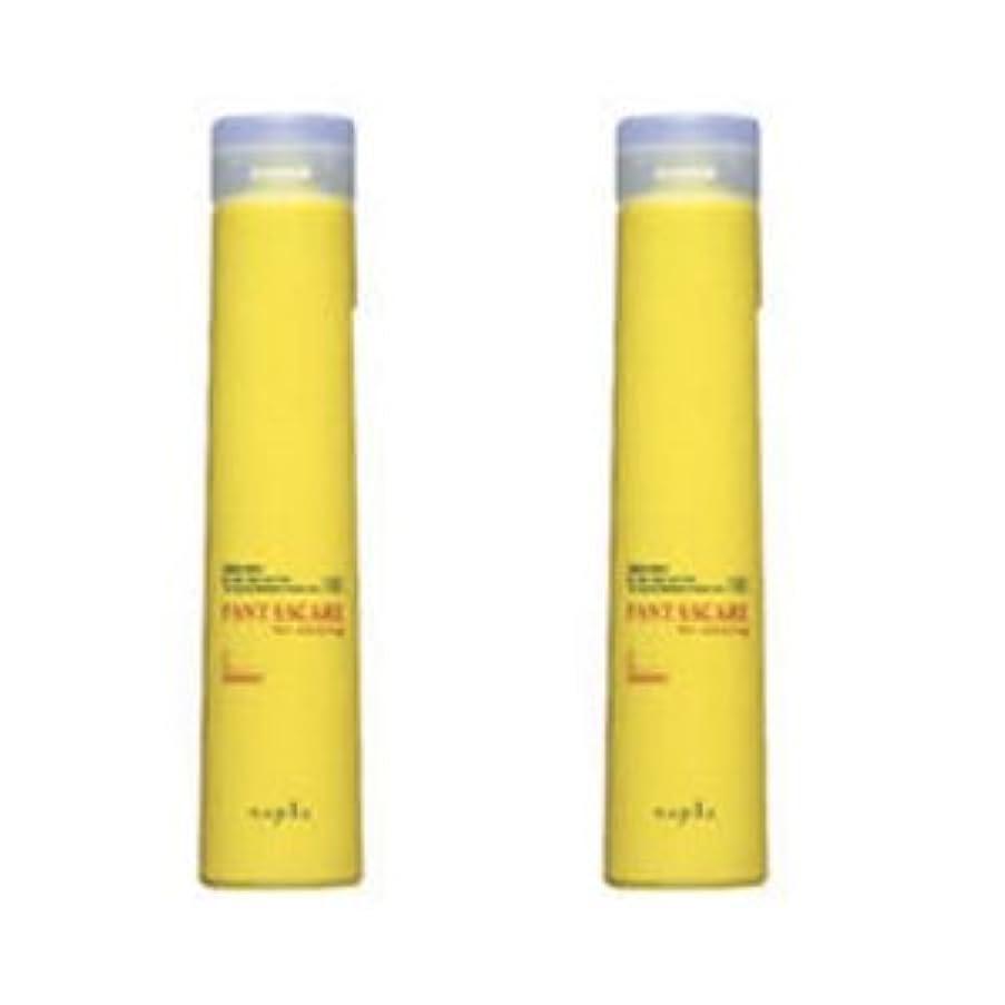 誘発する薬を飲む意気揚々【X2個セット】 ナプラ ファンタスケア Cシャンプー 200g