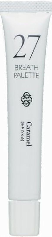 継続中強化吸うブレスパレット 27 キャラメル