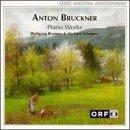 ブルックナー:ピアノ作品集(Bruckner: Piano Works)