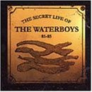 Secret Life of the Waterboys 81-85