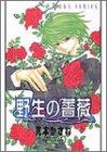 野生の薔薇 (あすかコミックス)の詳細を見る