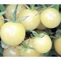 超甘い アイススノー ミニトマト 6粒