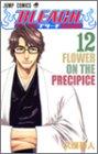 BLEACH -ブリーチ- 第12巻