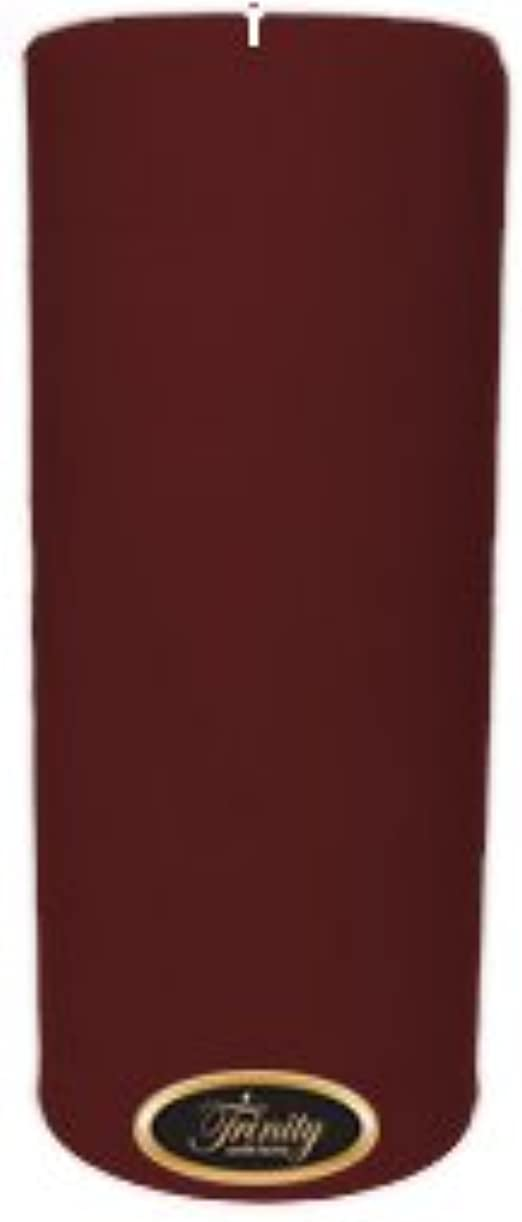 スリット寄生虫講義Trinity Candle工場 – Mulberry – Pillar Candle – 4 x 9