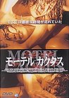 モーテルカクタス [DVD]