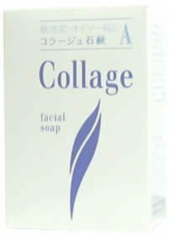 ねじれ違反する七時半コラージュA脂性肌用石鹸100g×2 1342