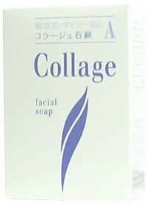 発表援助不純コラージュA脂性肌用石鹸100g×2 1342