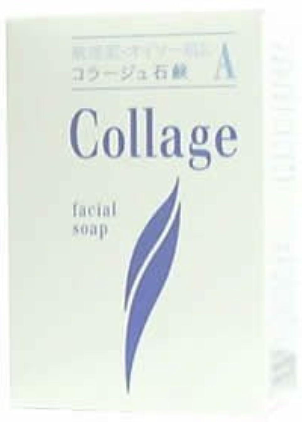 理論最後のわかりやすいコラージュA脂性肌用石鹸100g×2 1342