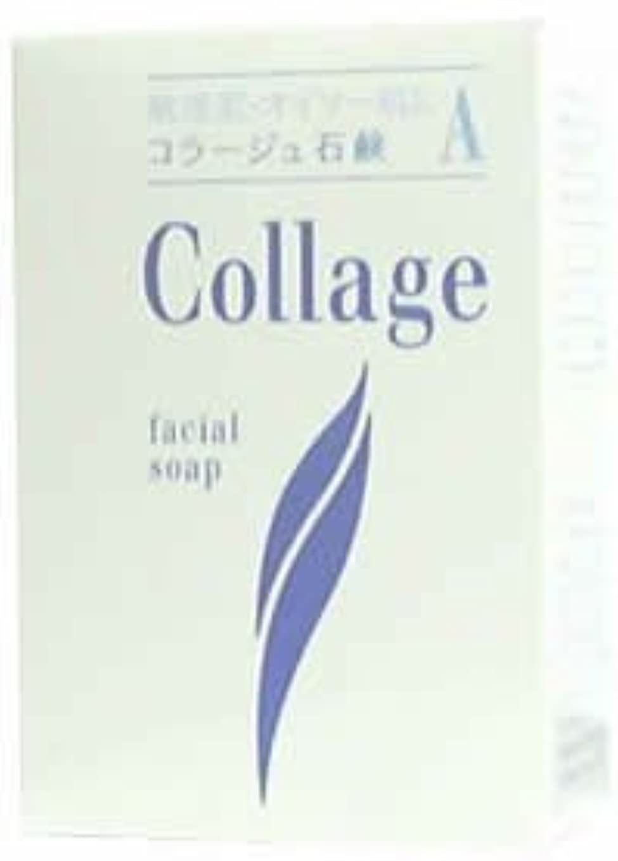 コラージュA脂性肌用石鹸100g×2 1342