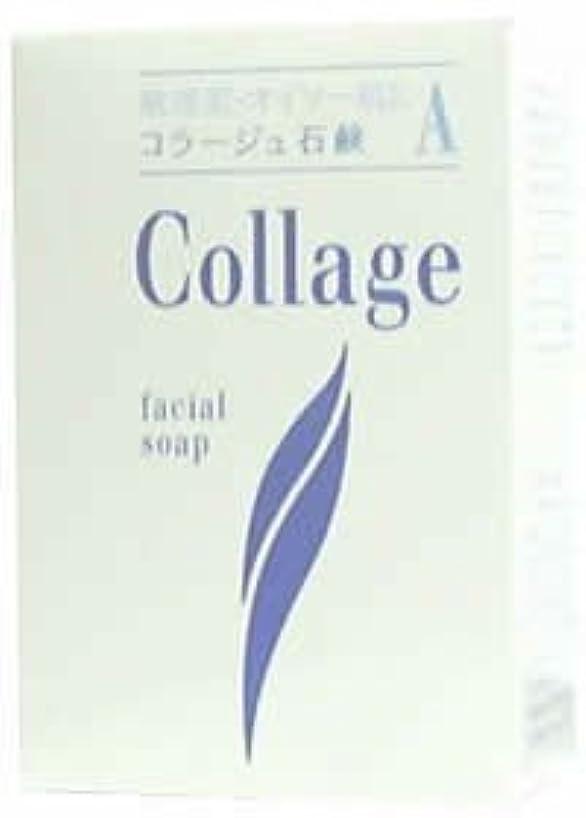 リズミカルな倉庫高価なコラージュA脂性肌用石鹸100g×2 1342