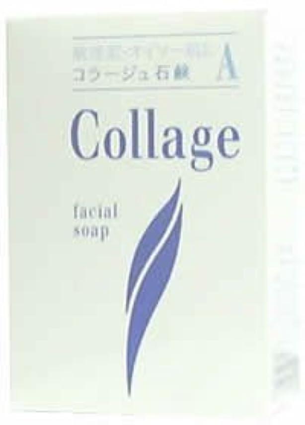嫌がらせしてはいけない誰でもコラージュA脂性肌用石鹸100g×2 1342