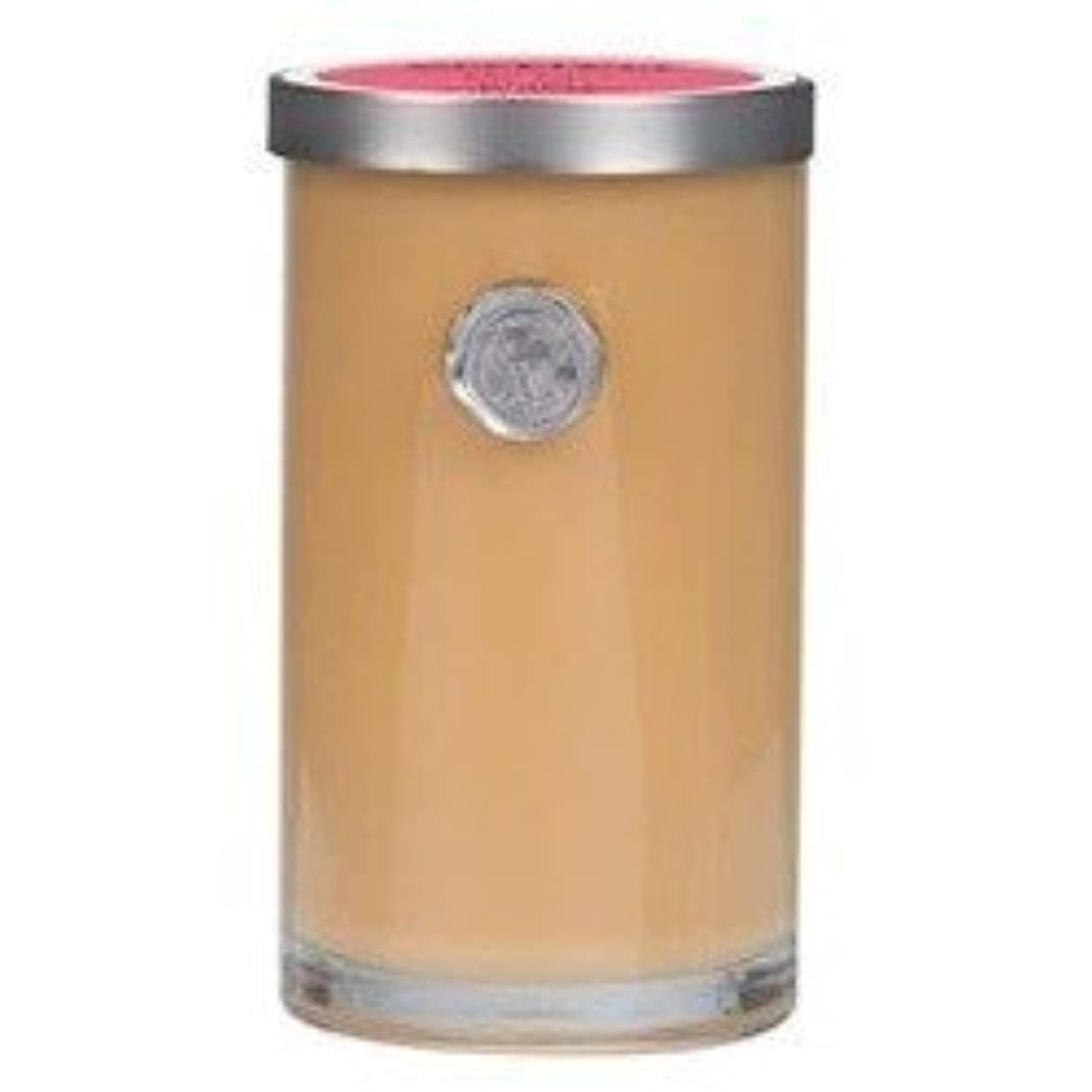 ロケットニックネーム最も遠いVOTIVO AROMATIC VOTIVE CANDLE RUSH OF ROSE