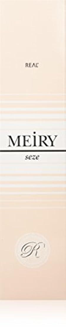 ブーム名誉あるソースメイリー セゼ(MEiRY seze) ヘアカラー 1剤 90g 2NB