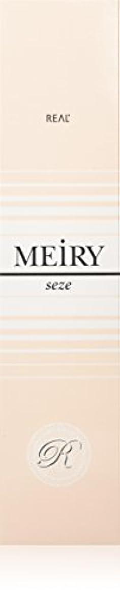 グレードブラウズ有力者メイリー セゼ(MEiRY seze) ヘアカラー 1剤 90g 2NB