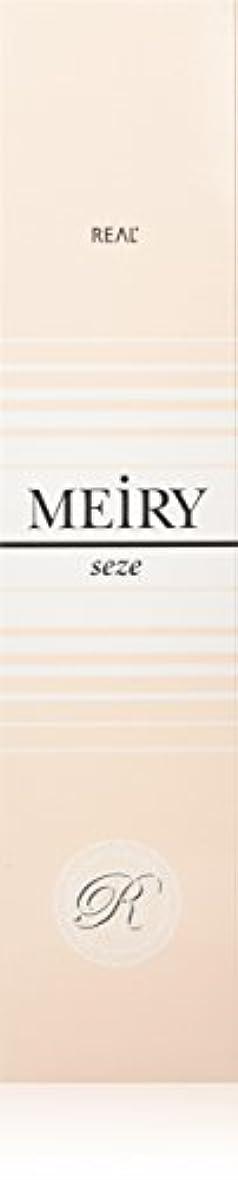 病な盆パイロットメイリー セゼ(MEiRY seze) ヘアカラー 1剤 90g 2NB