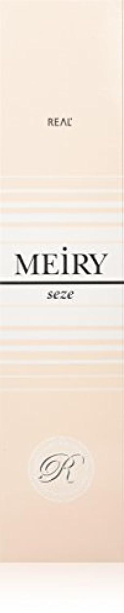 公爵モザイクシーンメイリー セゼ(MEiRY seze) ヘアカラー 1剤 90g 2NB