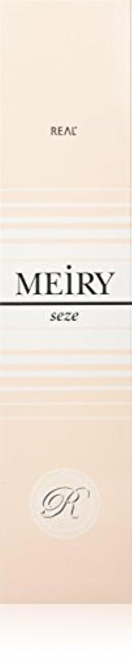 息苦しい奪うピックメイリー セゼ(MEiRY seze) ヘアカラー 1剤 90g 2NB