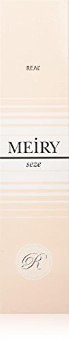 オーバーヘッド最少方向メイリー セゼ(MEiRY seze) ヘアカラー 1剤 90g 2NB