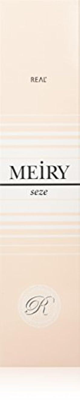 清めるプロット聴覚障害者メイリー セゼ(MEiRY seze) ヘアカラー 1剤 90g 2NB