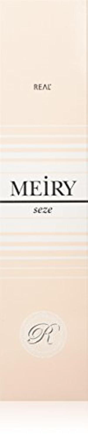 ふくろう炭素集中的なメイリー セゼ(MEiRY seze) ヘアカラー 1剤 90g 2NB