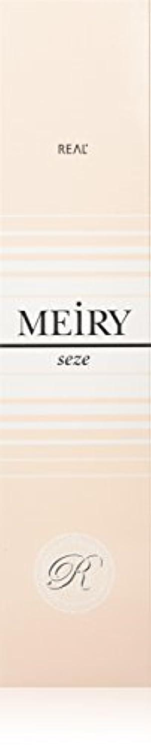 波ストライプにもかかわらずメイリー セゼ(MEiRY seze) ヘアカラー 1剤 90g 2NB