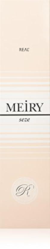 クリークハグ交通渋滞メイリー セゼ(MEiRY seze) ヘアカラー 1剤 90g 2NB