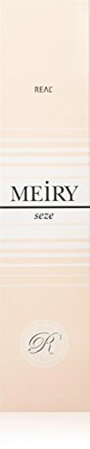メイリー セゼ(MEiRY seze) ヘアカラー 1剤 90g 2NB