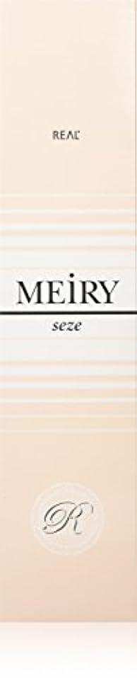 恩恵パトワペックメイリー セゼ(MEiRY seze) ヘアカラー 1剤 90g 2NB