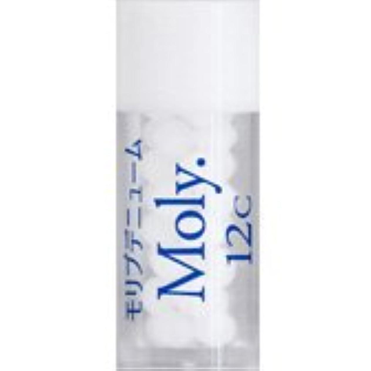 余計なハンカチプレミア36バイタルエレメントキット 対応 各種 (29)Moly.12C モリブデニューム)