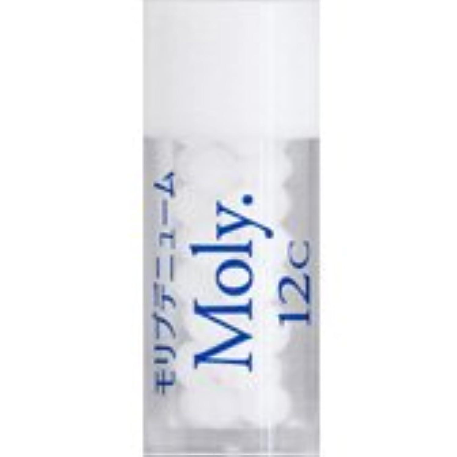リラックス順応性極小36バイタルエレメントキット 対応 各種 (29)Moly.12C モリブデニューム)