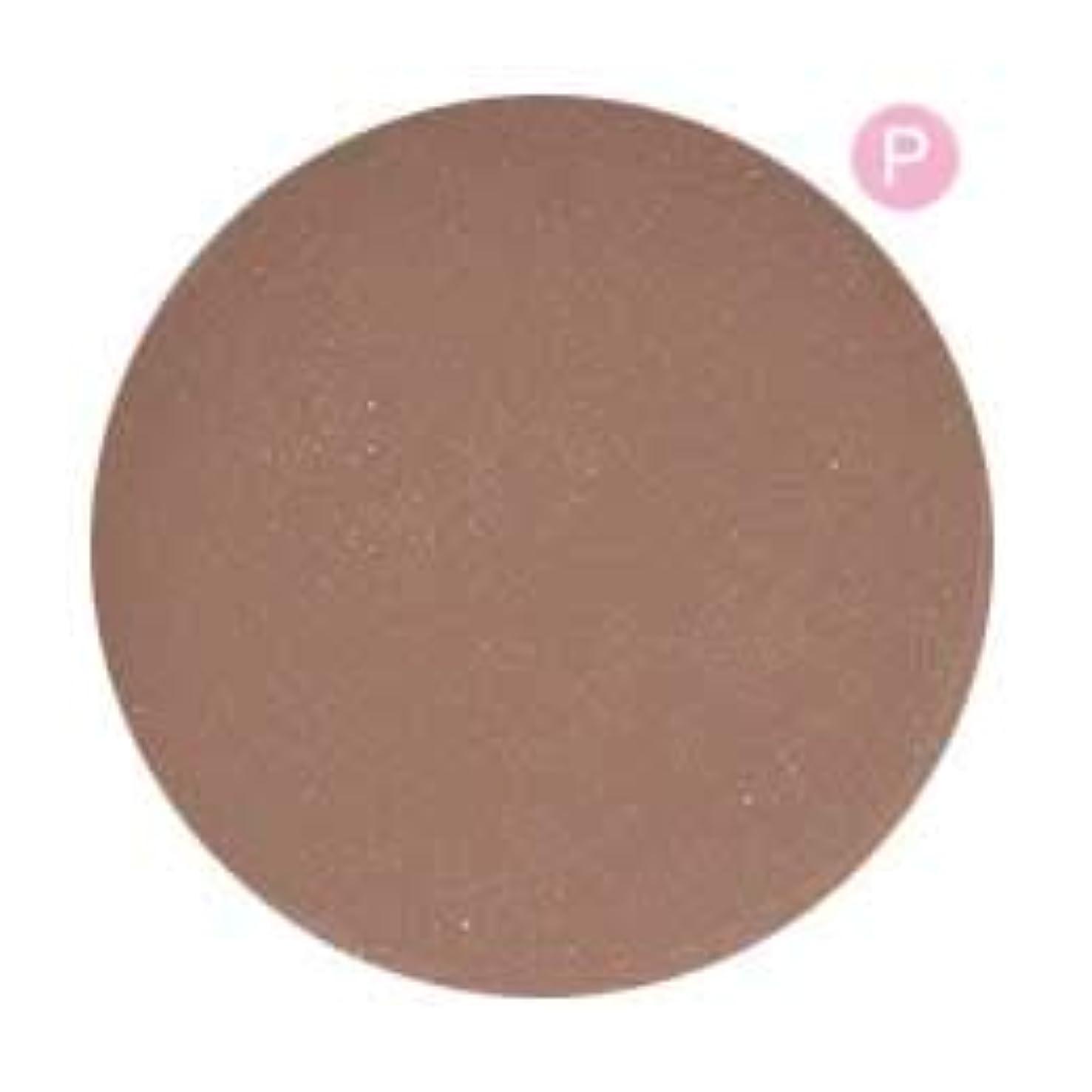未知の正しく論理PRE GEL カラージェル カラーEX グレージュメランコリー-P 3g PG-CE576 UV/LED対応