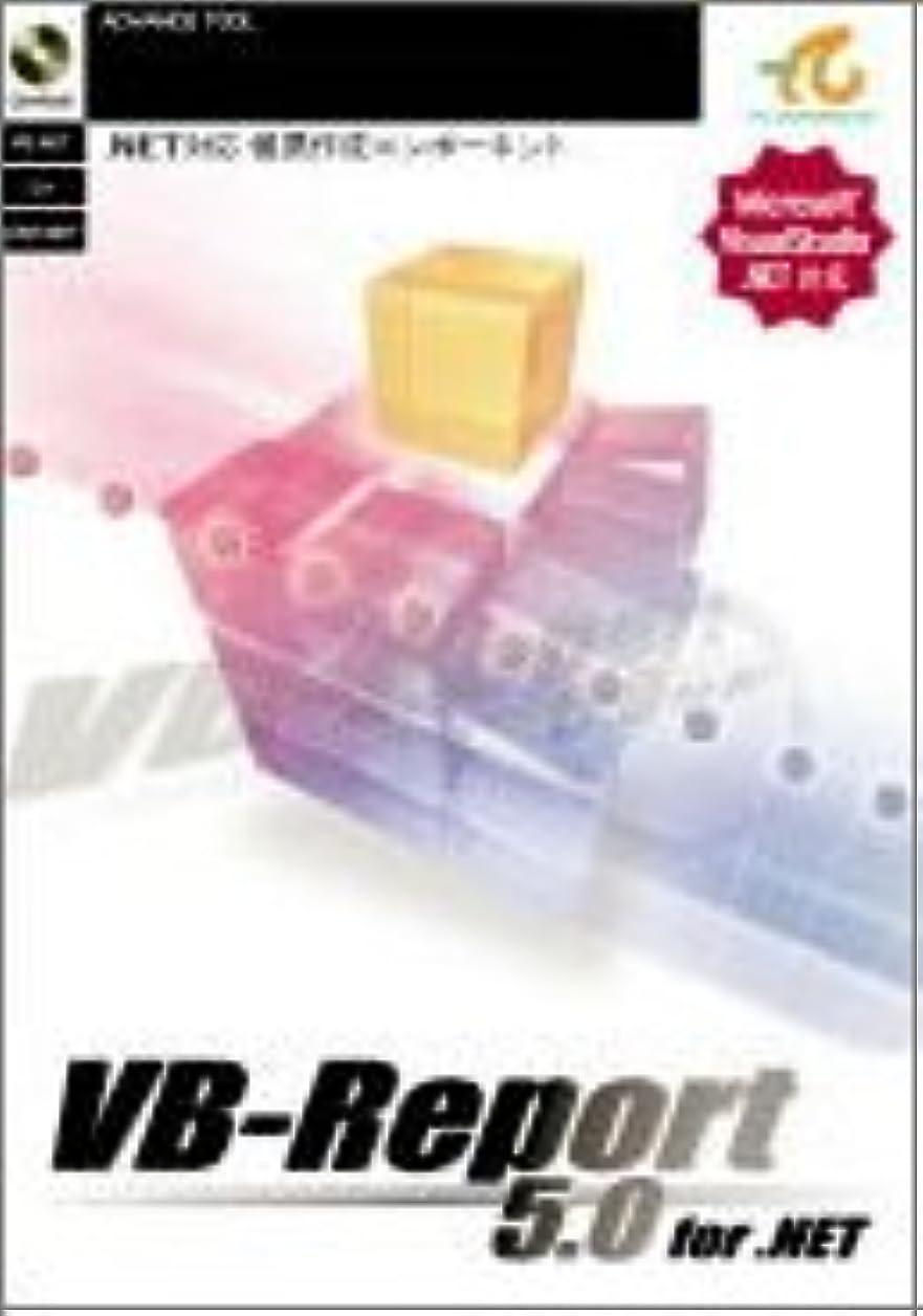 ひもパキスタン人バトルVB-Report 5.0 for .NET