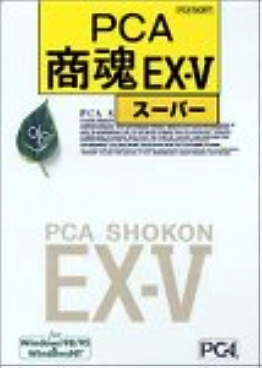 接続詞居眠りする進化PCA EX-V 商魂?商管セット