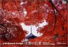 Virtual Trip 京都の紅葉 (トールサイズリニューアル) [DVD]