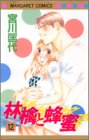 林檎と蜂蜜 12 (マーガレットコミックス)