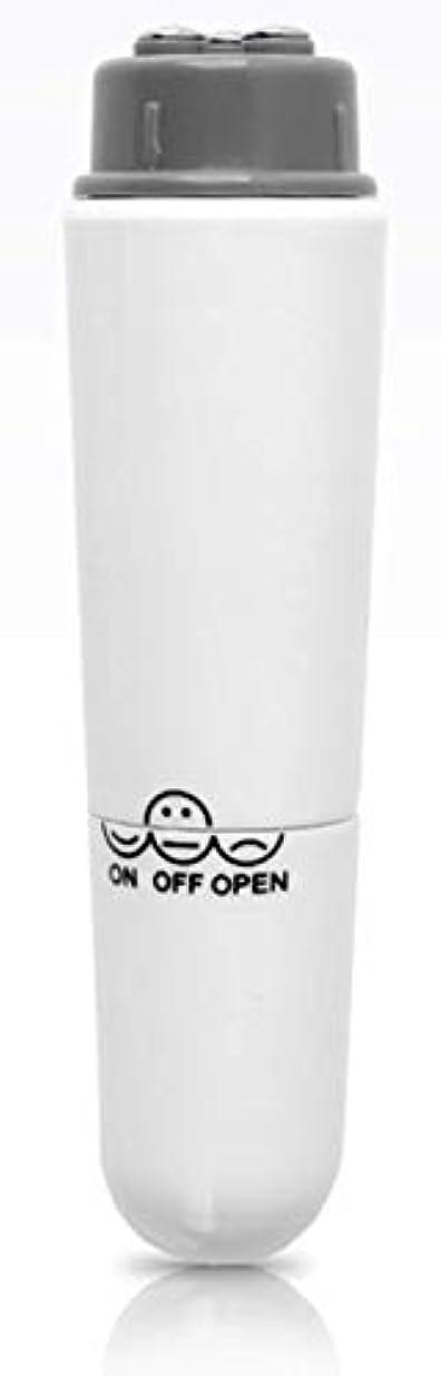 モチーフ冷凍庫お手入れ乾電池式 ミニ振動肌マッサージ 美肌 皮膚マッサージ器 ヘッド交換式 [並行輸入品]