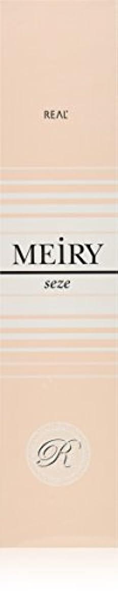 銛博覧会試用メイリー セゼ(MEiRY seze) ヘアカラー 1剤 90g 5NB