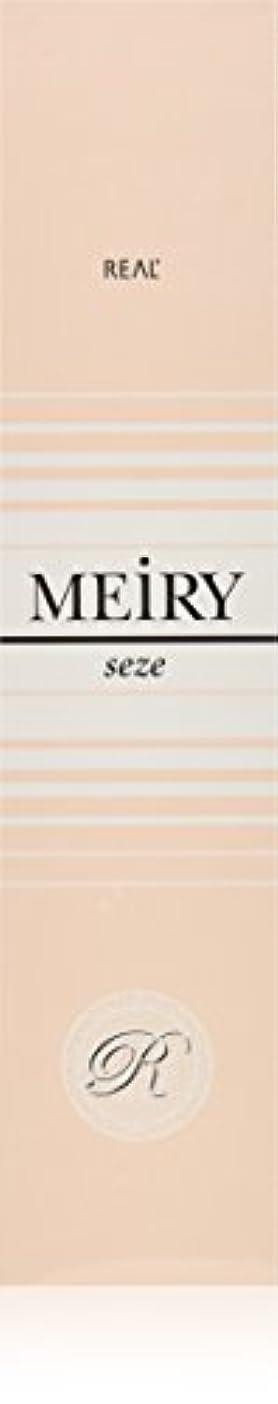 理想的には南方のにぎやかメイリー セゼ(MEiRY seze) ヘアカラー 1剤 90g 5NB