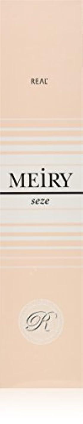 授業料パンツ消毒剤メイリー セゼ(MEiRY seze) ヘアカラー 1剤 90g 5NB