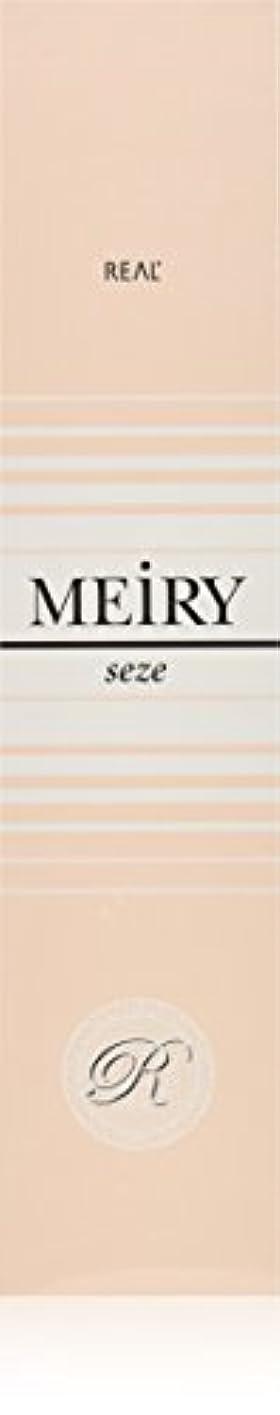 深いピカリング家庭メイリー セゼ(MEiRY seze) ヘアカラー 1剤 90g 5NB