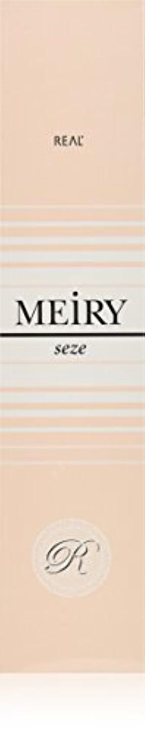 感謝筋異邦人メイリー セゼ(MEiRY seze) ヘアカラー 1剤 90g 5NB